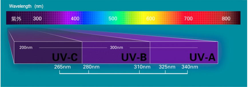 Deep UV Chip for UV Flashlight